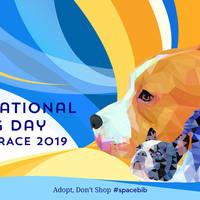 International Dog Day Online Race 2019