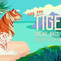 Run For Tiger Online Race 2019